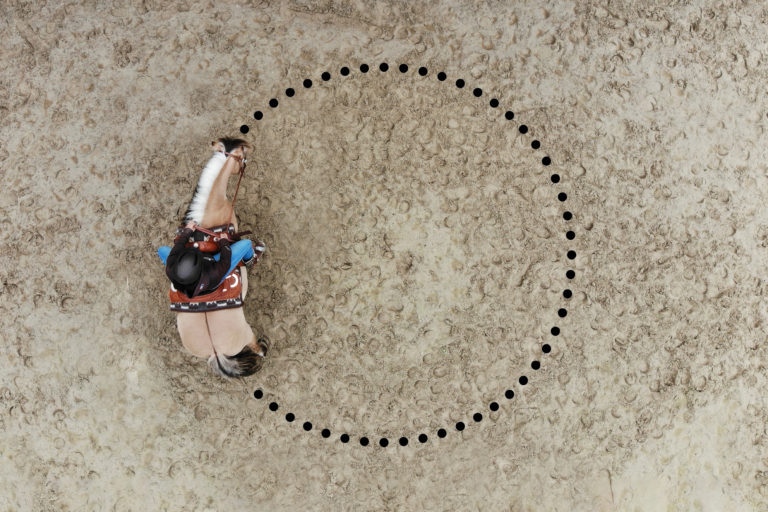Gymnastizierung Pferd - Basisvolte
