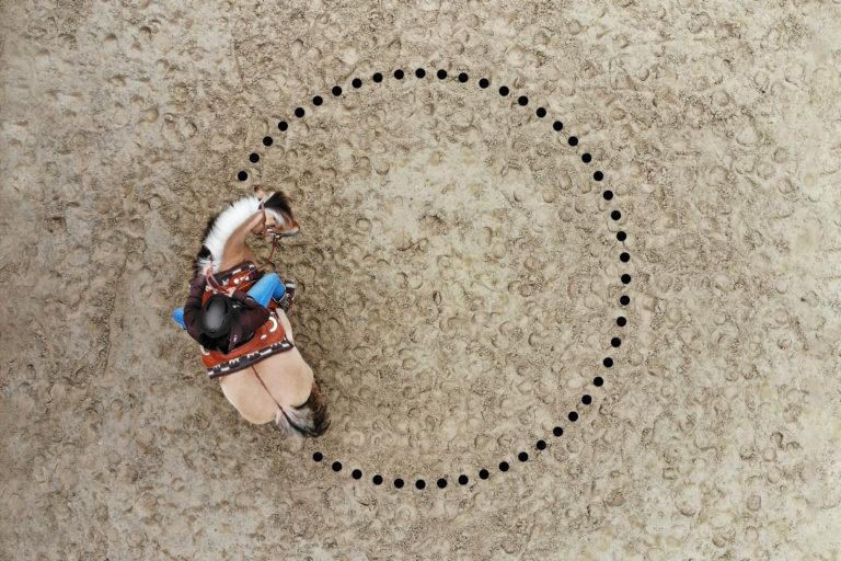 Gymnastizierung Pferd - Lockerung Hals